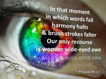 Wide-Eyed Awe