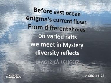 Diversity Reflects