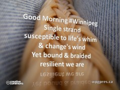 Resilient We Are