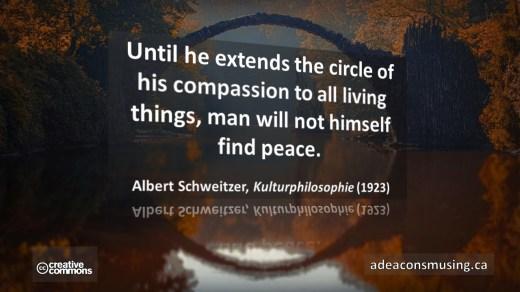 Quote: Albert Schweitzer