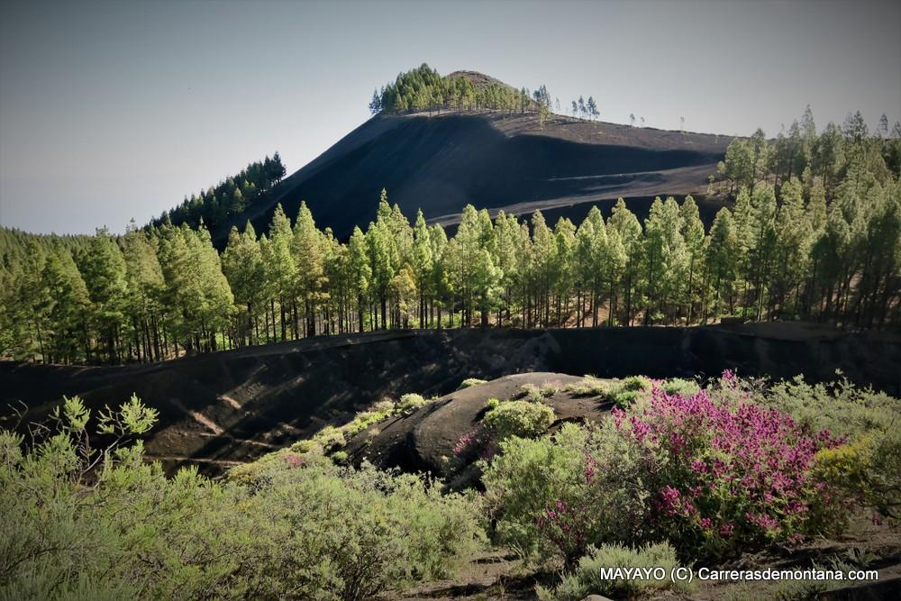 Montañas de Gran Canaria: 300km de senderos para trekking, BTT, trail running y más. Entrevista #Radiotrail