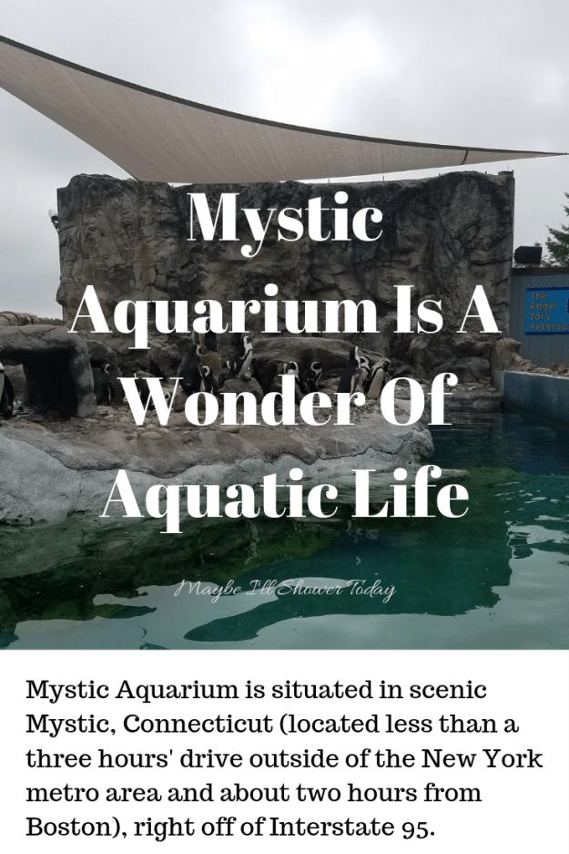 mysticaquariumtitle.png