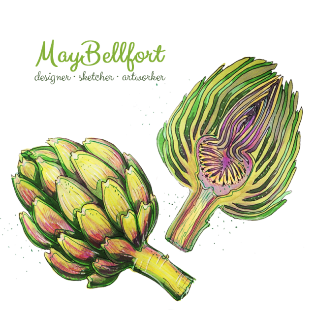 Food sketch by May Bellfort - Artichoke sketching
