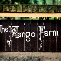 The Mango Farm, Antipolo | Passion Cooks Farm Themed Reception