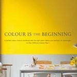 Benjamin Moore Paints in Review