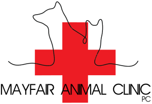 Mayfair Animal Clinic