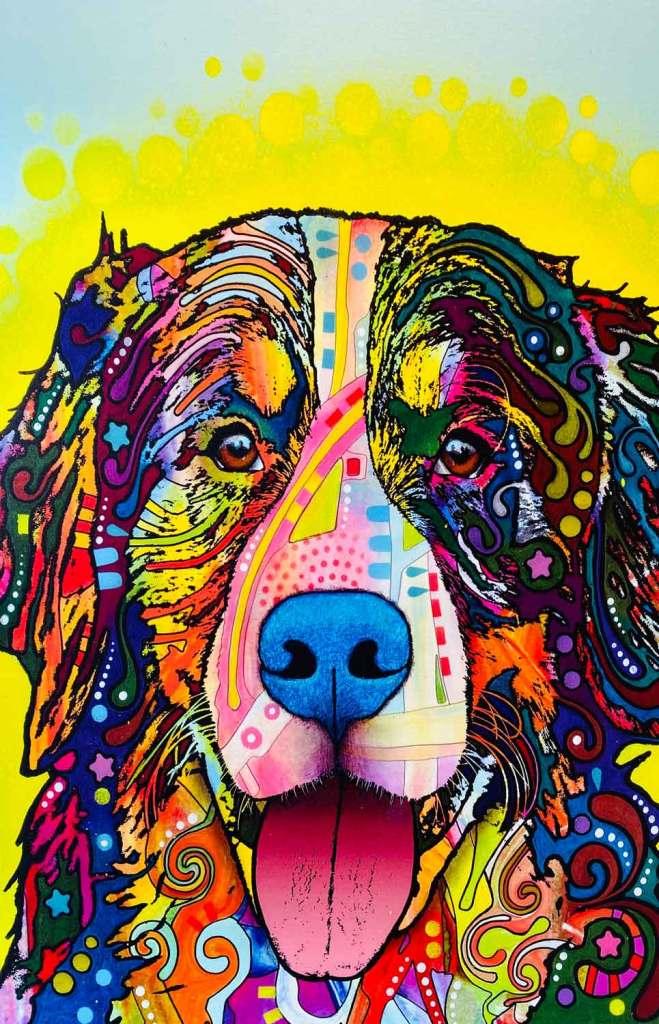 Dean Russo Bernese Mtn Dog