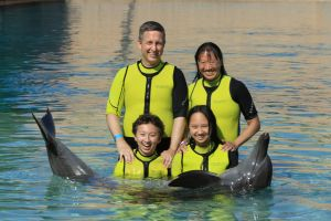 swimming with the dolphins in Atlantis Dubai
