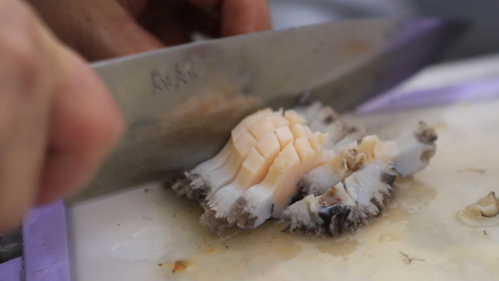 Cutting Abalone