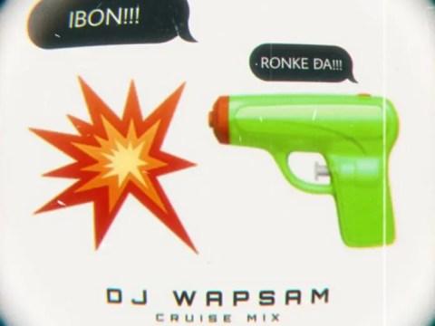 DJ Wapsam – Ibon (Tiktok Sound)