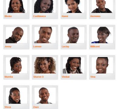 Big Brother Africa 2011 Contestants