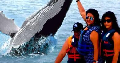 Tour Guayaquil Salinas con avistamiento de ballenas