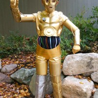Gold Winner!  (DIY C-3PO Costume)