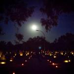 Japanese Cemetery in Broome photo by Mayu Kanamori