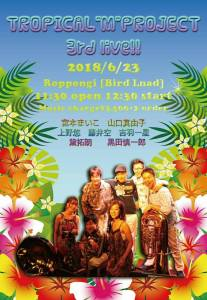 tropical m project