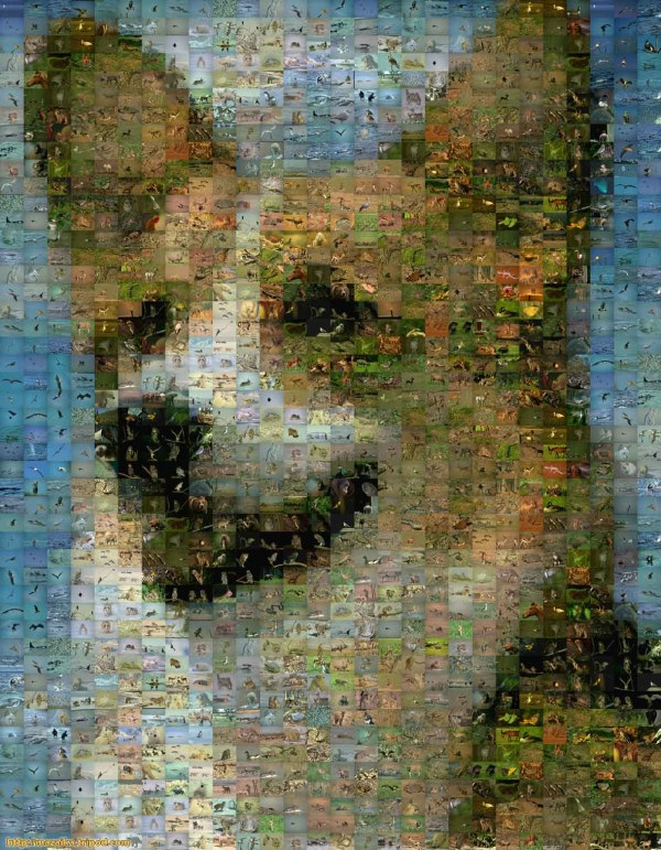 Mosaic Pictures Made From Photos