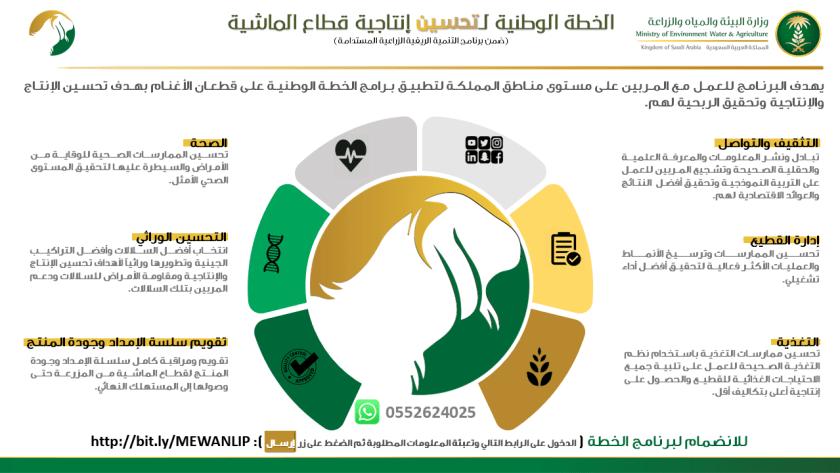 الخطة الوطنية لتحسين قطاع الماشية