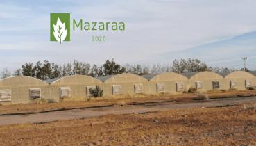مزرعة للبيع هدى الشام