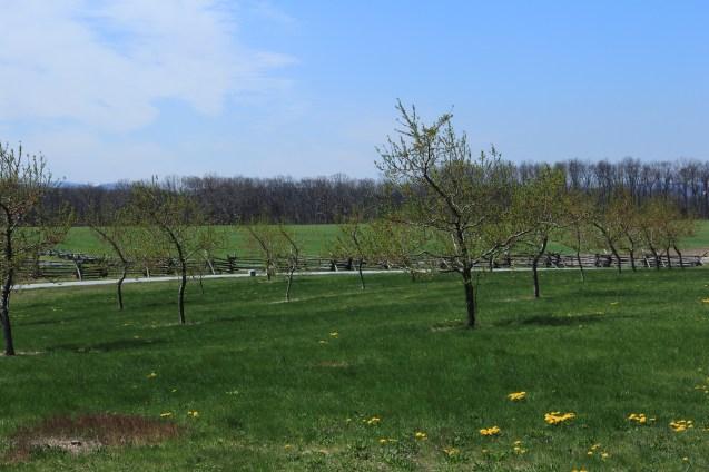 Peach Orchard - Gettysburg