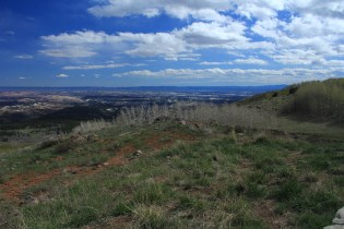 Dixie National Forest (UT-12)