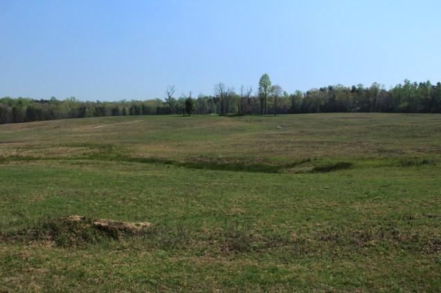 Upton Charge (Spotsylvania)