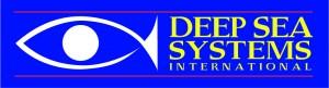 DSSI logo horizontal