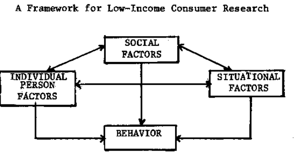 How would you differentiate a low income consumers and