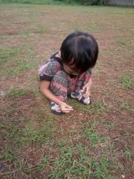 Kai cari belalang