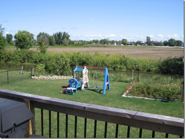Back yard with vegetable garden, roses, and playset