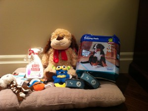 Pet Smart new puppy goodies