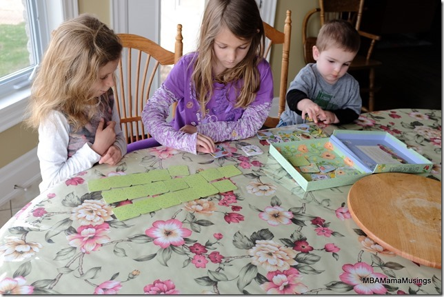 Playing Grow a Garden Memory Game