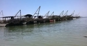 Fishing rigs in Kariba