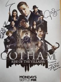 My Gotham poster