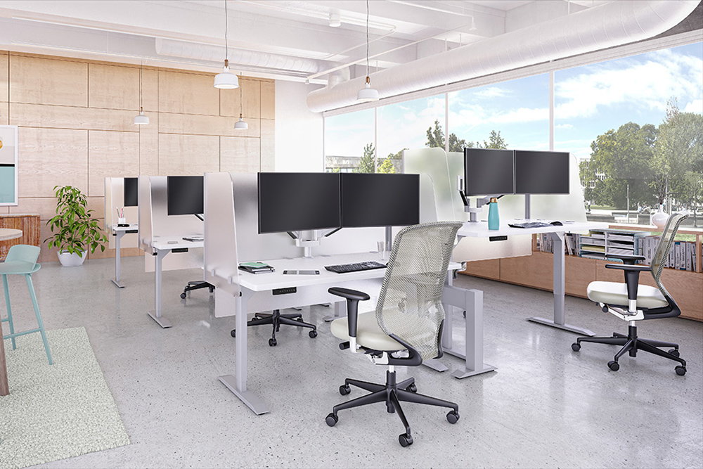 Individual desks in white with side screens