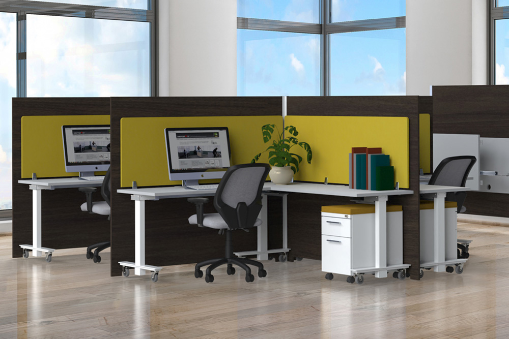 Height Adjustable Desk with Task chairs and dividers