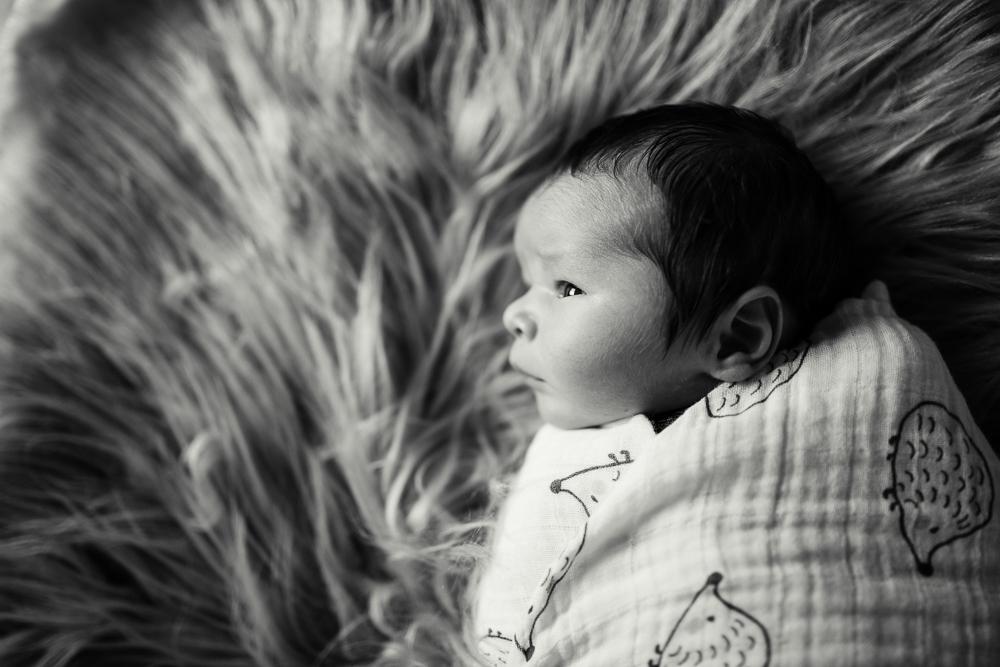 Mackenzie Belich Photography