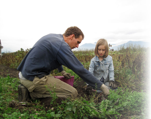 Abundant Acre farmer and Highland Community Church member Andy Abrahams harvests potatoes with his daughter. Photo: Cara Abrahams