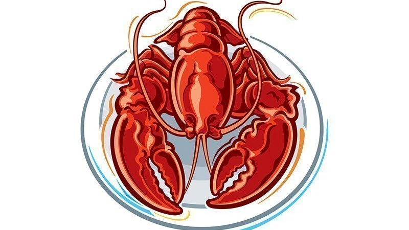 Clawing for answers on lack of lobsters