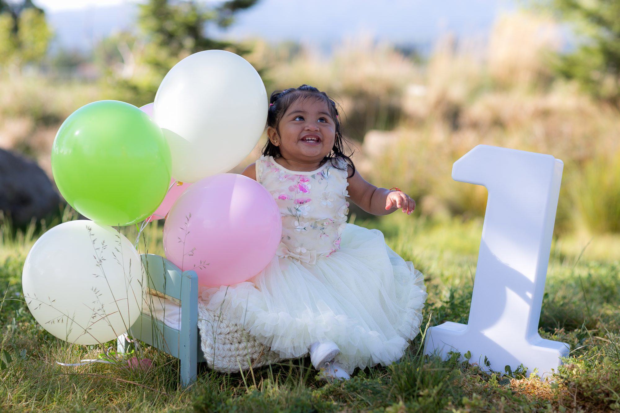 first birthday photography san jose ca