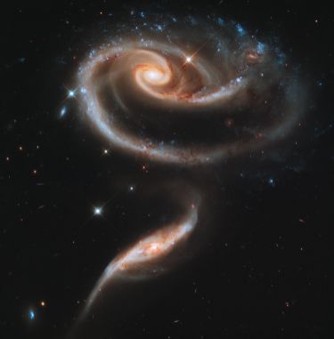 """A """"Rose"""" Made of Galaxies Highlights Hubble's 21st Anniversary"""