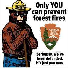 forestFre