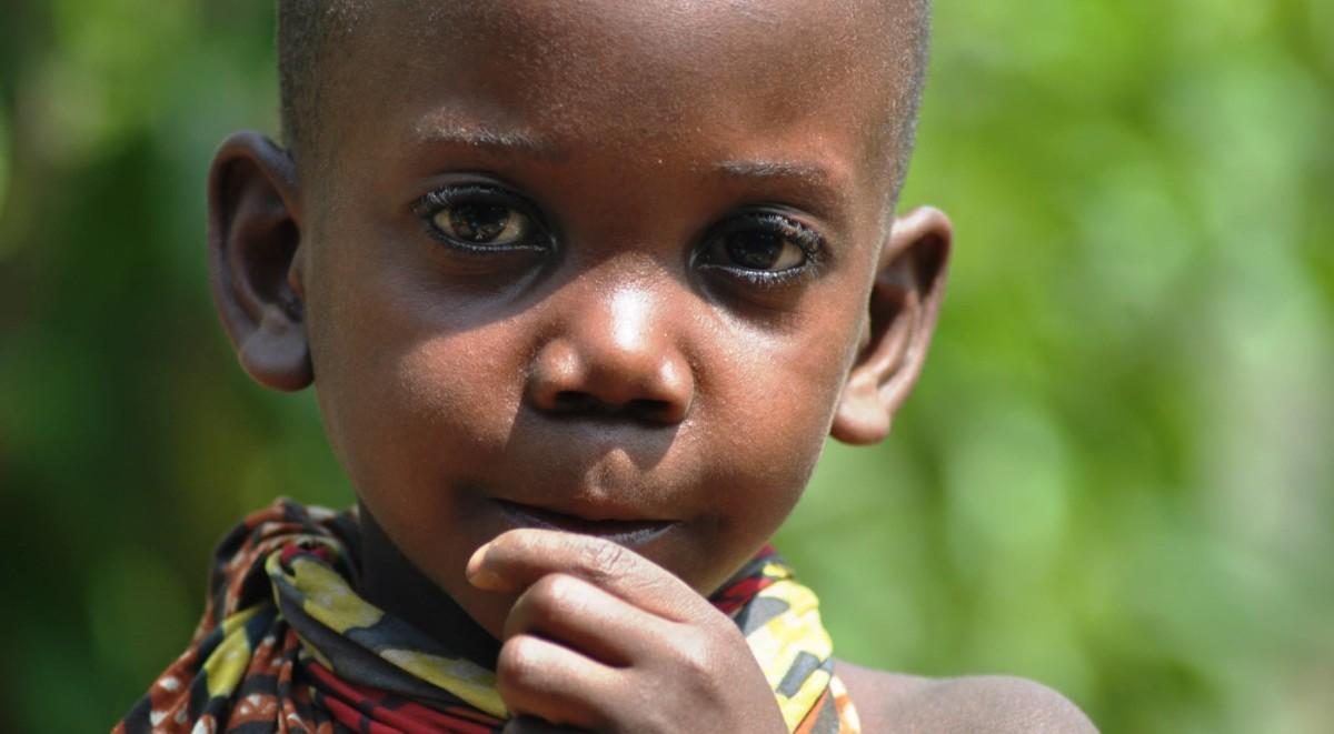mbuti pygmy iq welcome