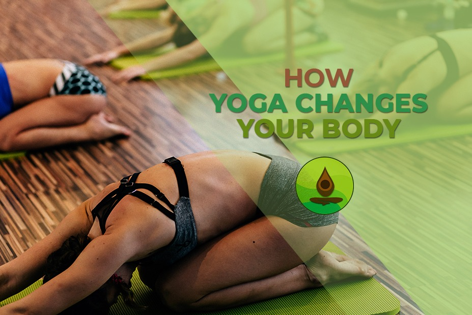 how yoga changes body