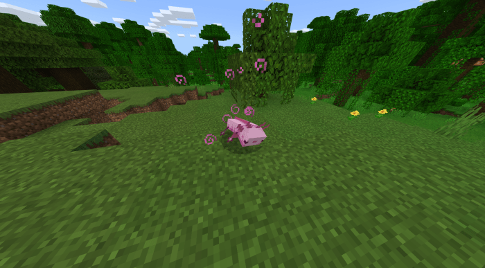 But since the new biomes aren't arriving in minecraft until later this. Axolotls Replica Concept Minecraft PE Addon