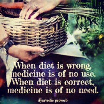 foodproverb