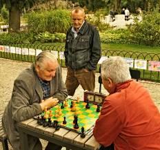 Bernardinu_sodas_chess_sachmatai_313
