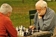 Bernardinu_sodas_chess_sachmatai_337