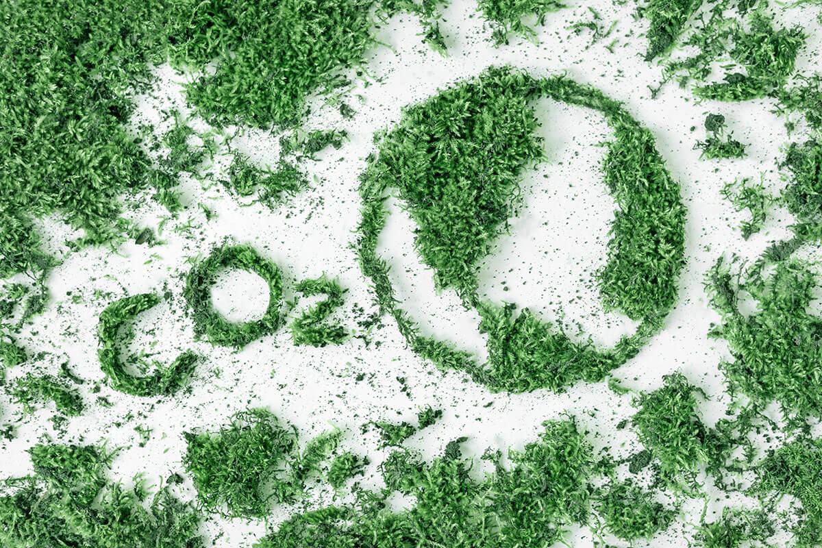 İPM: Türkiye, Karbonsuzlaşma Hedefine 30 Yılda Ulaşabilir