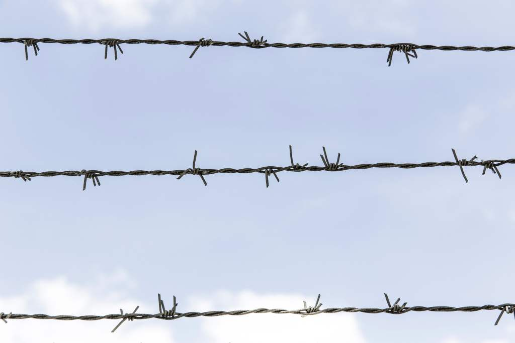 barbed wire fence across a blue sky