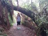 Me in the Bush